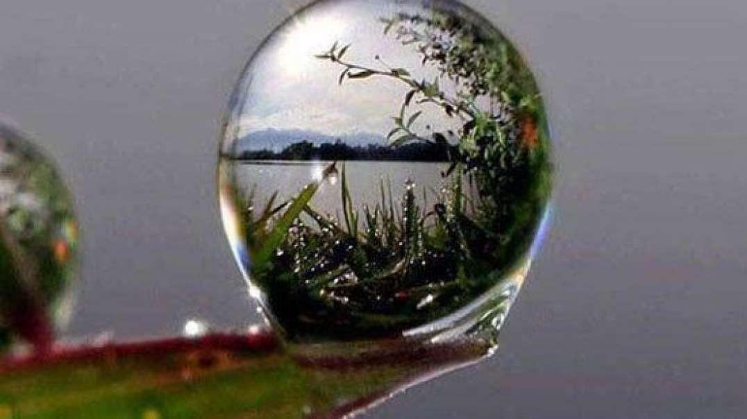 طبیعت زیبا و دیدنی