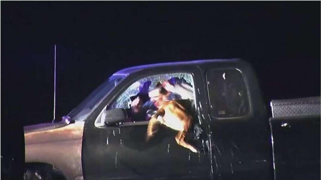 پلیس قهرمان K-9 برای بازداشت از طریق پنجره اقدام می کند