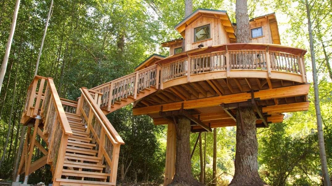 ساخت خانه درختی در جزیره اورکاس