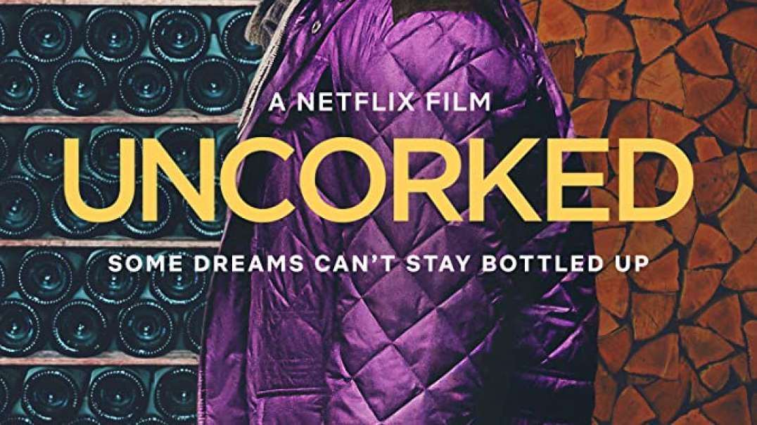 تریلر فیلم Uncorked 2020